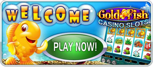 Mobile gambling in Swiss amante